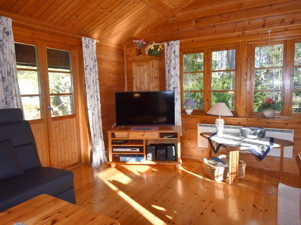 Essplatz und Kaminofen im Wohnzimmer