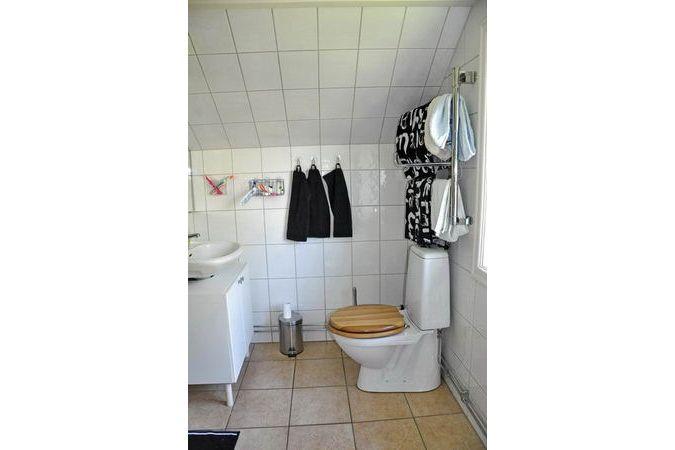 das moderne Bad mit WC, Dusche und Waschmaschine