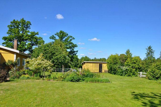 Blick in den Garten (hinter dem Haus)