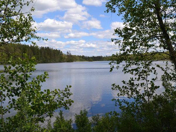 Die beiden nahegelegenen Seen sind ideal zum Baden und Angeln!