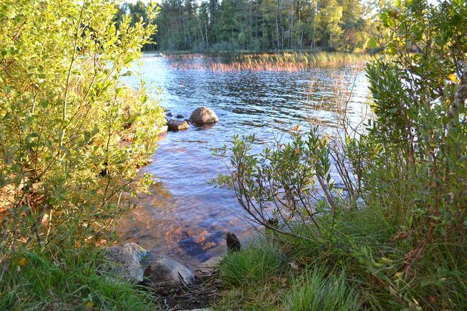 Flachwasserbereich - für Kinder geeignet