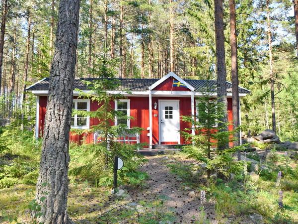 Blick auf das moderne Ferienhaus in herrlicher Waldlage