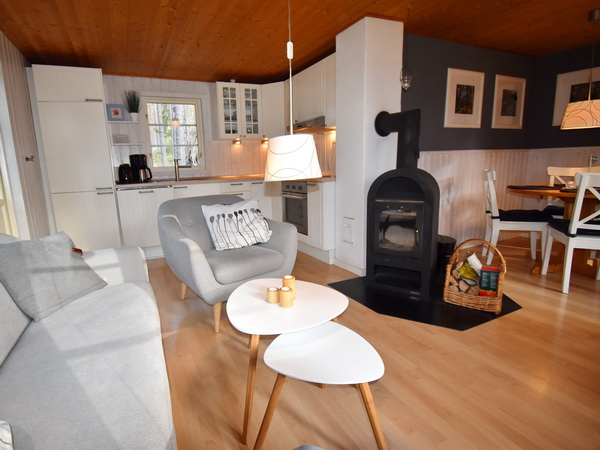 Wohnbereich mit Kaminofen und integrierter Küche