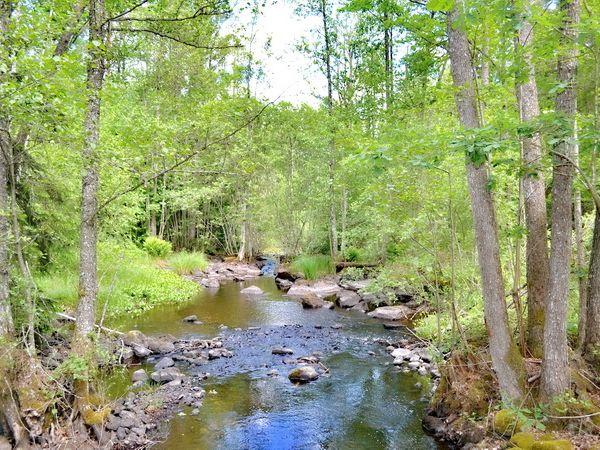 Der Weg führt über einen kleinen Bach - Sie wohnen also auf einer Insel!