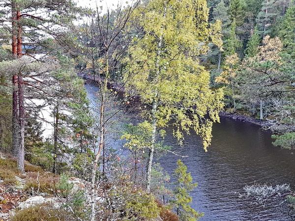 Umgebung mit herrlicher Natur!