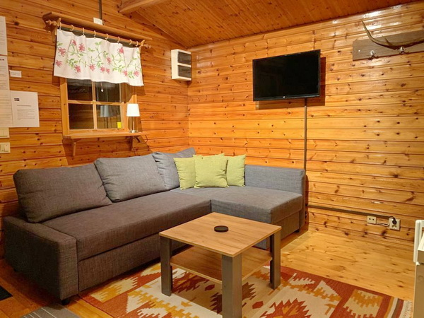 Wohnraum mit Schlafsofa (für eine Person)