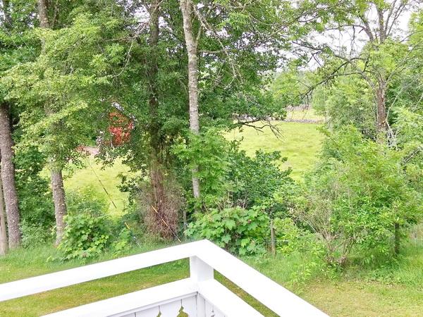 Blick von der Veranda ins Grüne