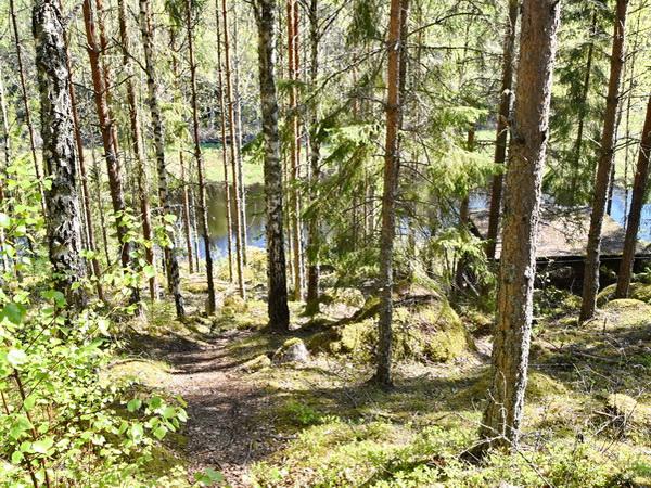 Weg zum Fluss (900m vom Haus entfernt)