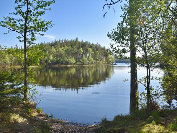 Bade- und Angelsee (6 km vom Haus entfernt)