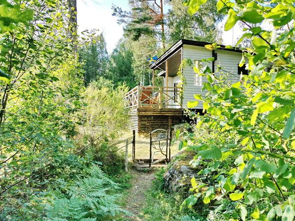 Fußweg vom Auto-Stellplatz im Wald zum Haus