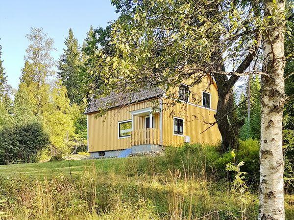 Blick auf das Haus in schöner Lage am Waldrand